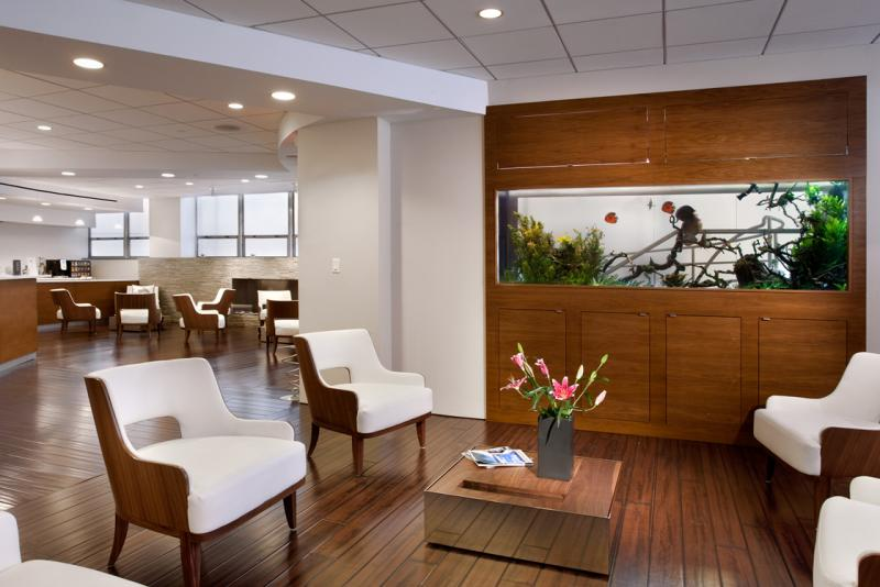 Will doctor's offices look more like this in the near future? Some say the natural design elements can help patients.