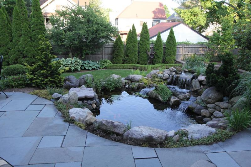 The fish pond in the patio at the Buell's home in Hartford's West End.