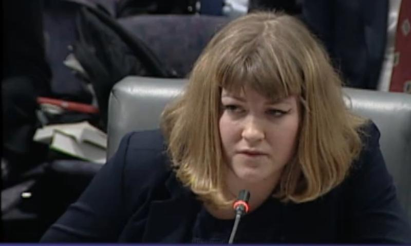 Yale student Hannah Schmitt, speaking to the General Assembly's Higher Education and Employment Advancement Committee.