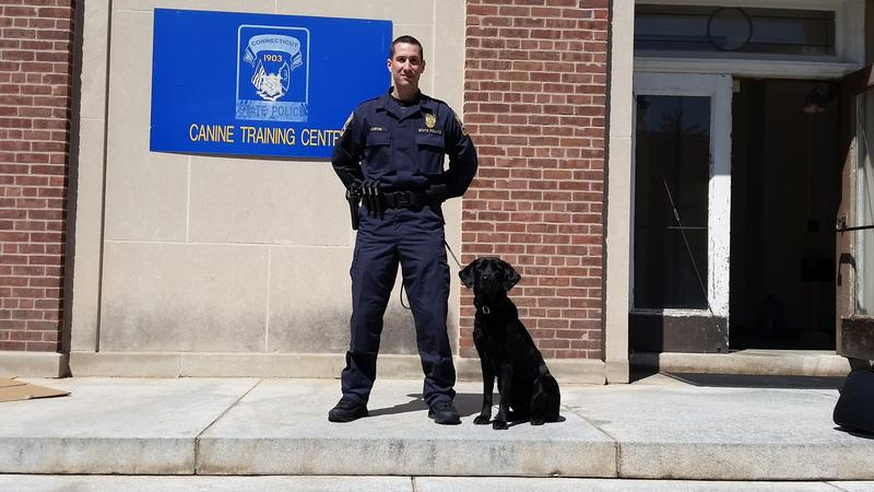 Detective George Jupin and Selma, a five-year-old labrador retriever trained to sniff out computer drives and other hardware.