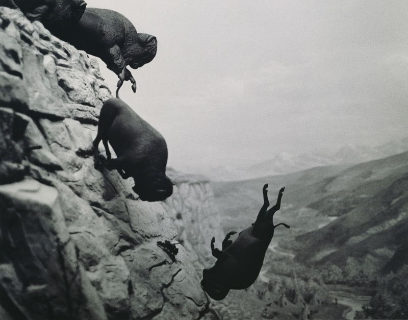 David Wojnarowicz, Untitled (Buffalo), 1988, Platinum Print. The exhibit has images produced in response to the AIDS epidemic, or by artists and activists seeking to control the way the disease was perceived by the public.