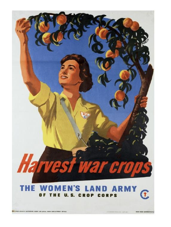 Women's Land Army Recruitment Poster, WWII