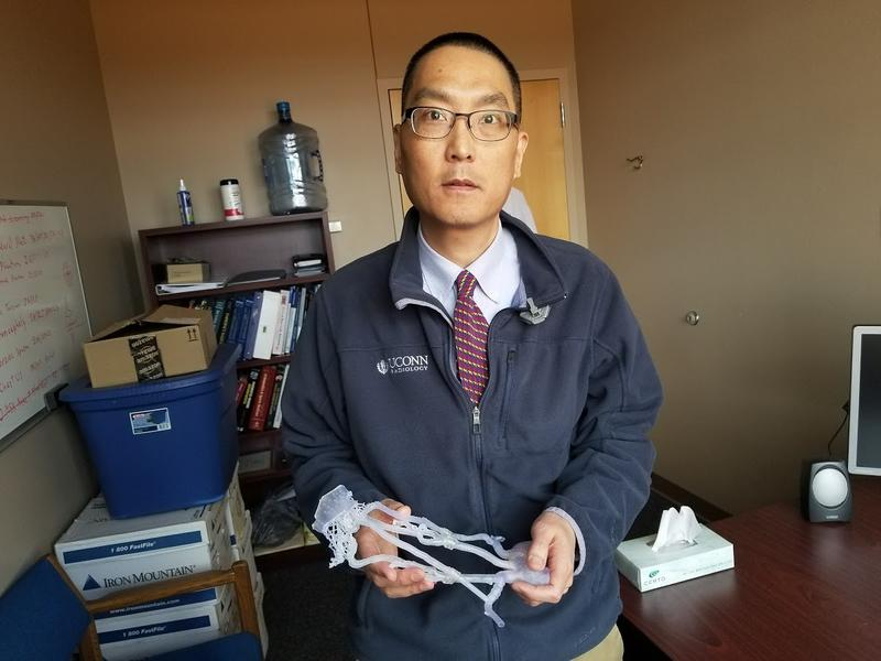Clifford Yang holds the 3-D printed model used to train medical professionals. Yang spoke about the future of the technology from his office in Farmington, Conn.