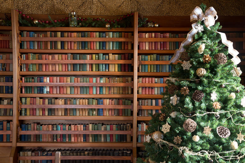 "Photographer Caryn B. Davis took pictures in many historic homes in Connecticut for her book ""A Connecticut Christmas."" This picture was taken in the library of Gillette Castle in East Haddam."