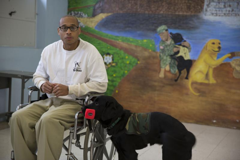 Gerard Chappell working with his dog, Pete, teaching him how to fetch things for a future disabled veteran.
