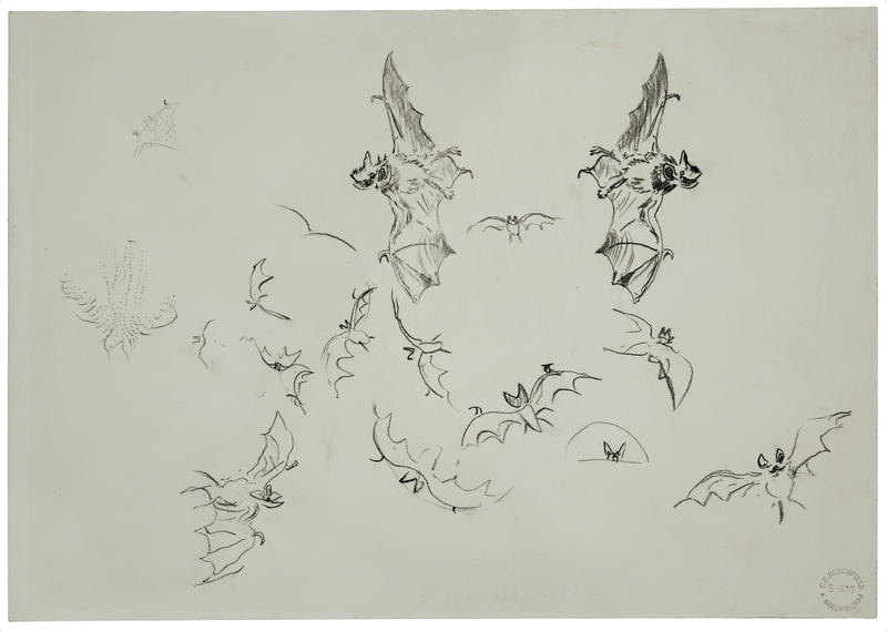 Charles Ephraim Burchfield, Study of Bats in Flight, c. 1954-63. Conté crayon on wove paper mounted on cardboard. Wadsworth Atheneum Museum of Art, Bequest of Edward Gorey, 2001.13.34.