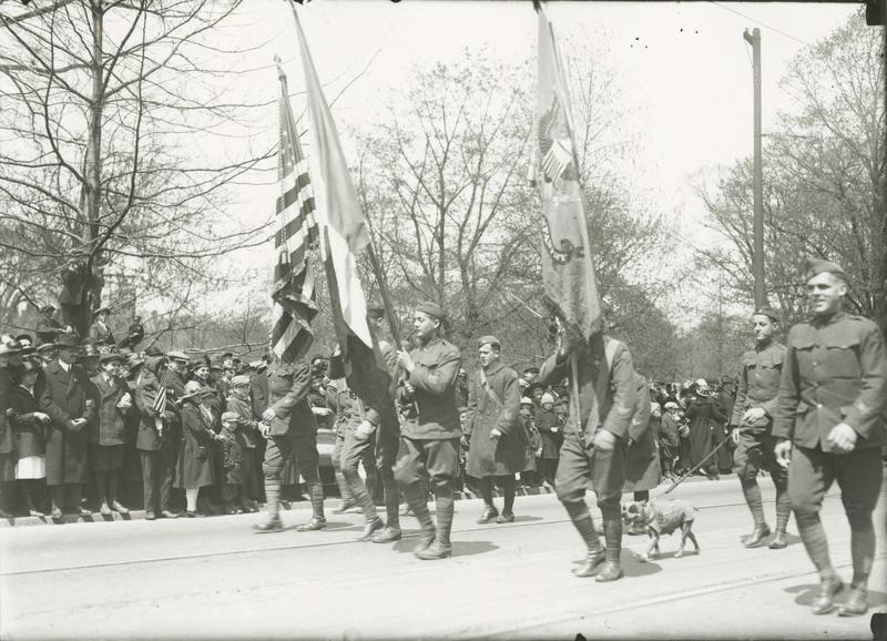 Sergeant Stubby marches with Corporal Robert Conroy and the 102d Regiment through Bushnell Park in Hartford, Connecticut on April 30, 1919.