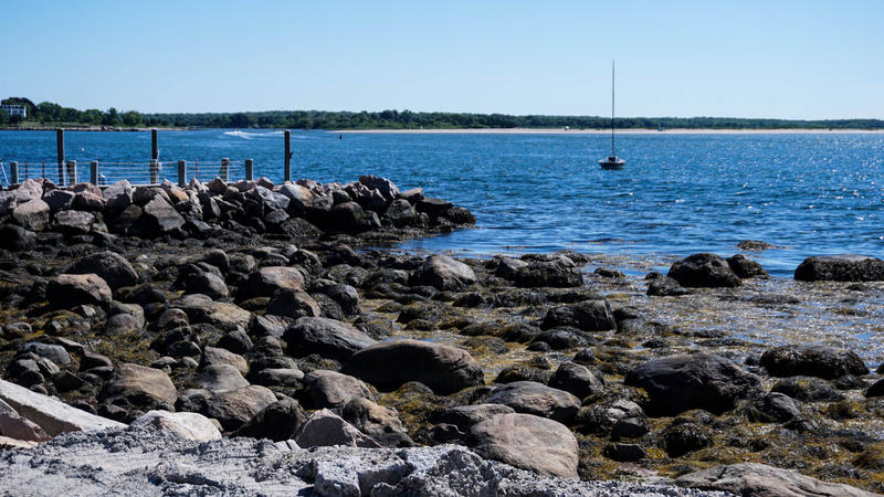 The town hopes that a ban would keep its shores, like Stonington Point pictured here, clean.