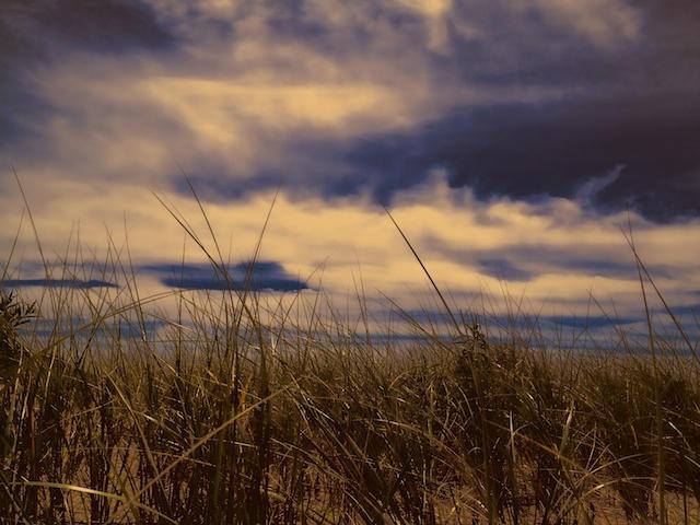 Hammonasset Beach State Park.