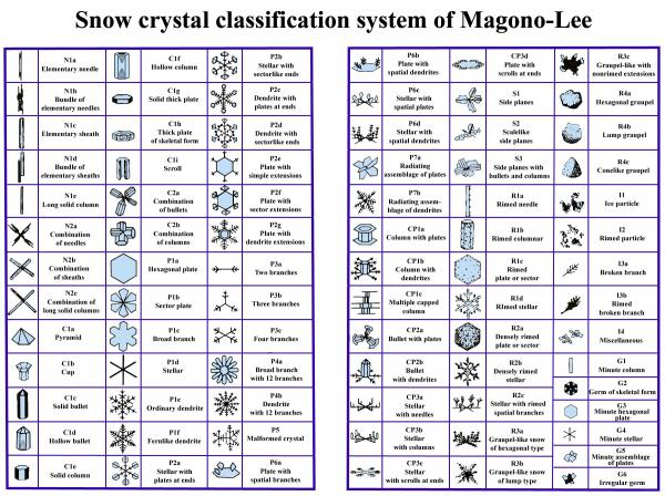 Find the example in this table that most closely resembles the ice crystals you see -- if they last long enough to examine them.