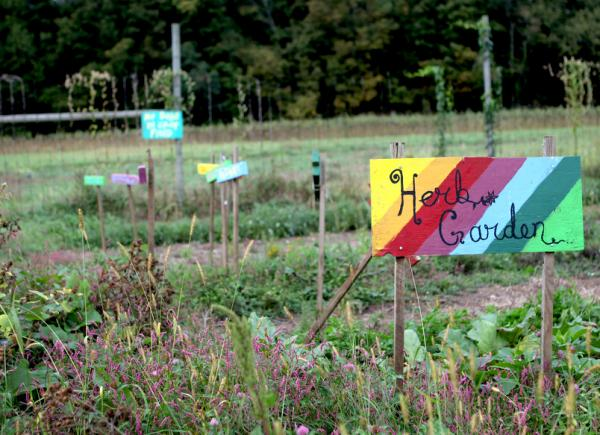 An herb garden at Holcomb Farm in West Granby.