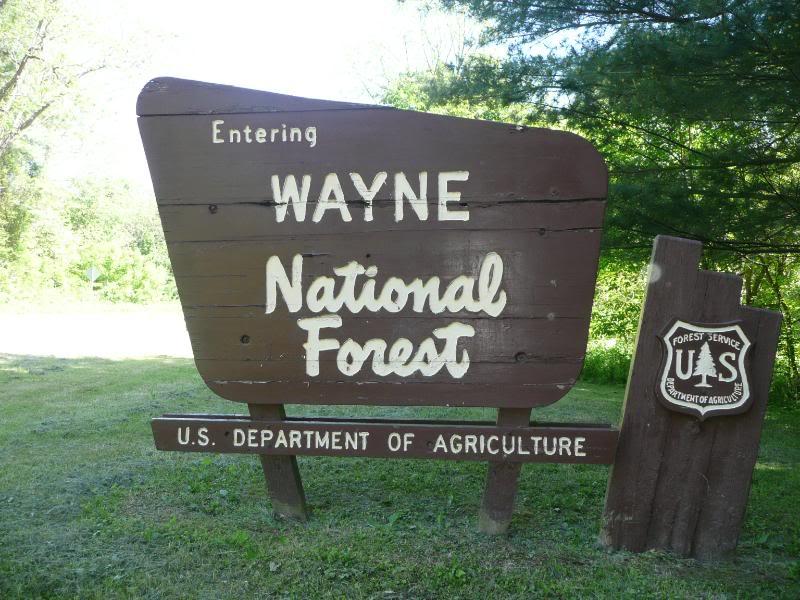 Hasil gambar untuk Wayne National Forest