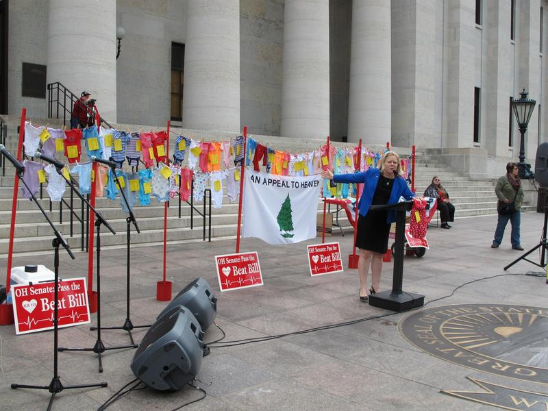 Janet Porter speaks at rally at Ohio Statehouse in 2015.