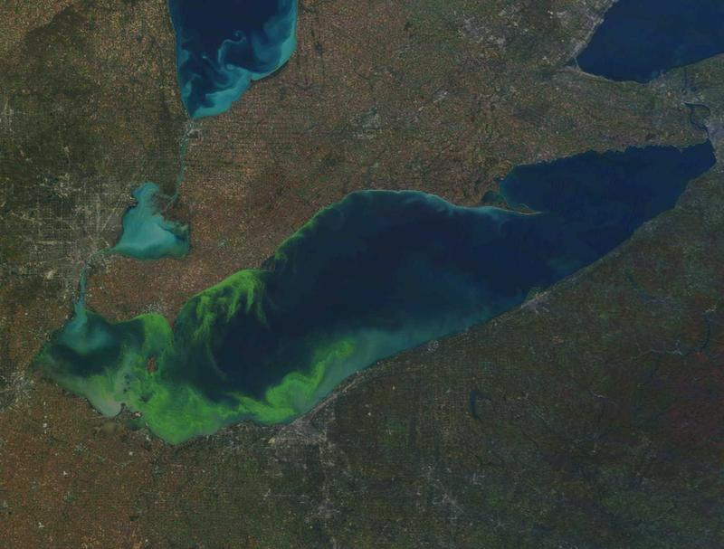 The 2014 cyanobacteria bloom that shut down Toledo's water supply drew national attention. But algae blooms in Lake Erie have been a problem for years. In fact, as seen in this October 9, 2011 satellite photo, you can often see them from space.