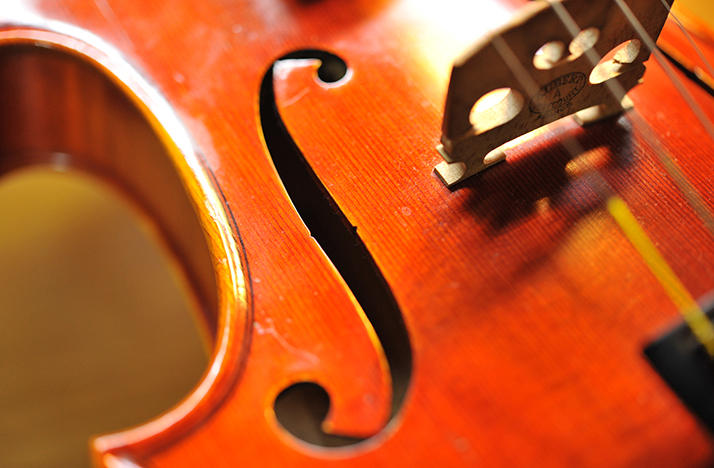 A violin close-up