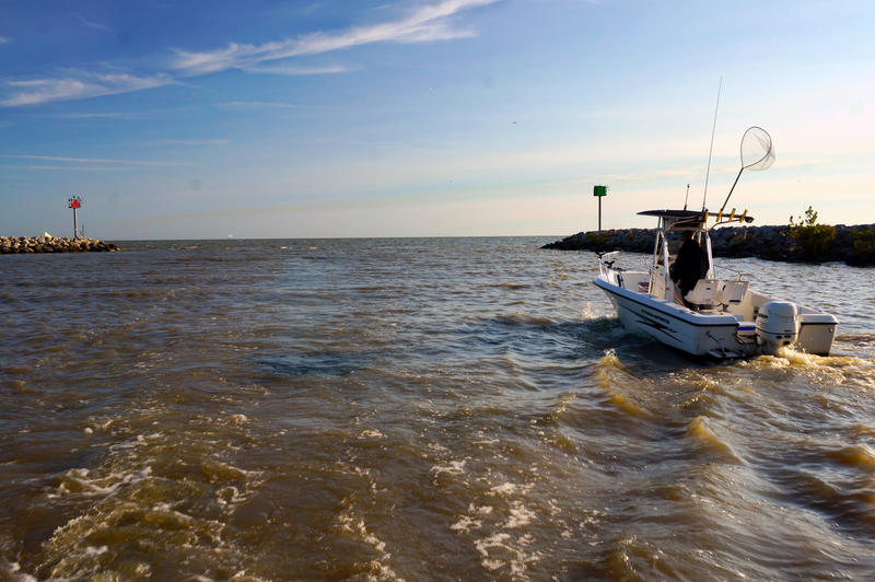 Ohio fines three farmers for killing thousands of fish in for Lake erie fishing