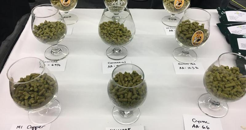 Some hops on display from the Local Hops Company of Williamsburg, Michigan.
