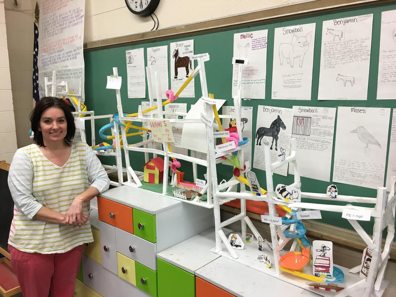Stacy Piper, a seventh grade math and science teacher at Dominion Middle School, was one of several grant winners from Clintonville Go Public.