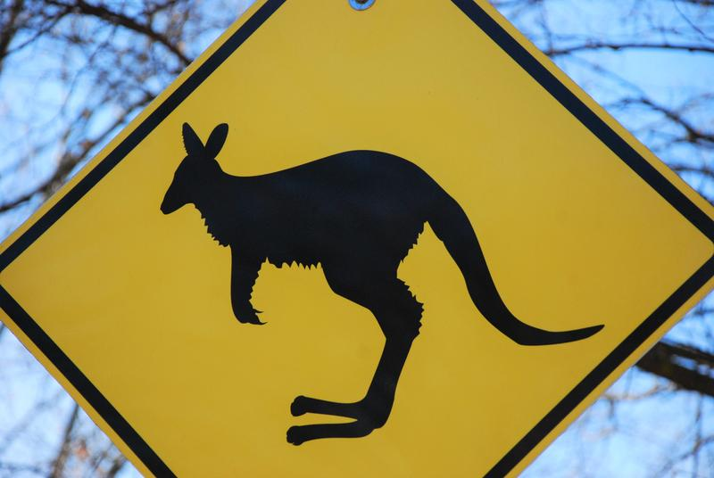 "Clintonville's ""Kangaroo Crossing"" sign, which was removed in March, will find a new home at Clinton Elementary"