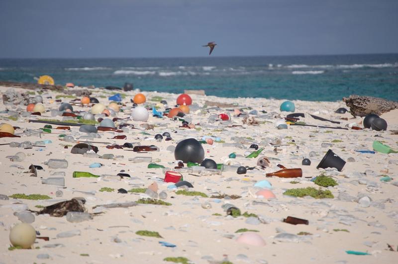 Plastic debris washed ashore on the Hawaiian island of Laysan.