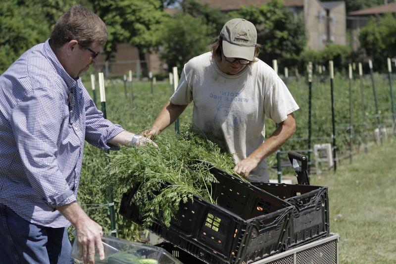 Ohio State Extension professor Mike Hogan (left) and urban farmer Mark Van Fleet (right).