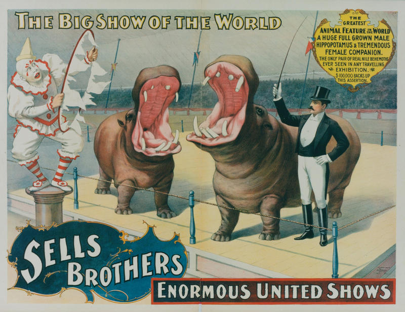 Circus Poster with clown and two hippopotamuses