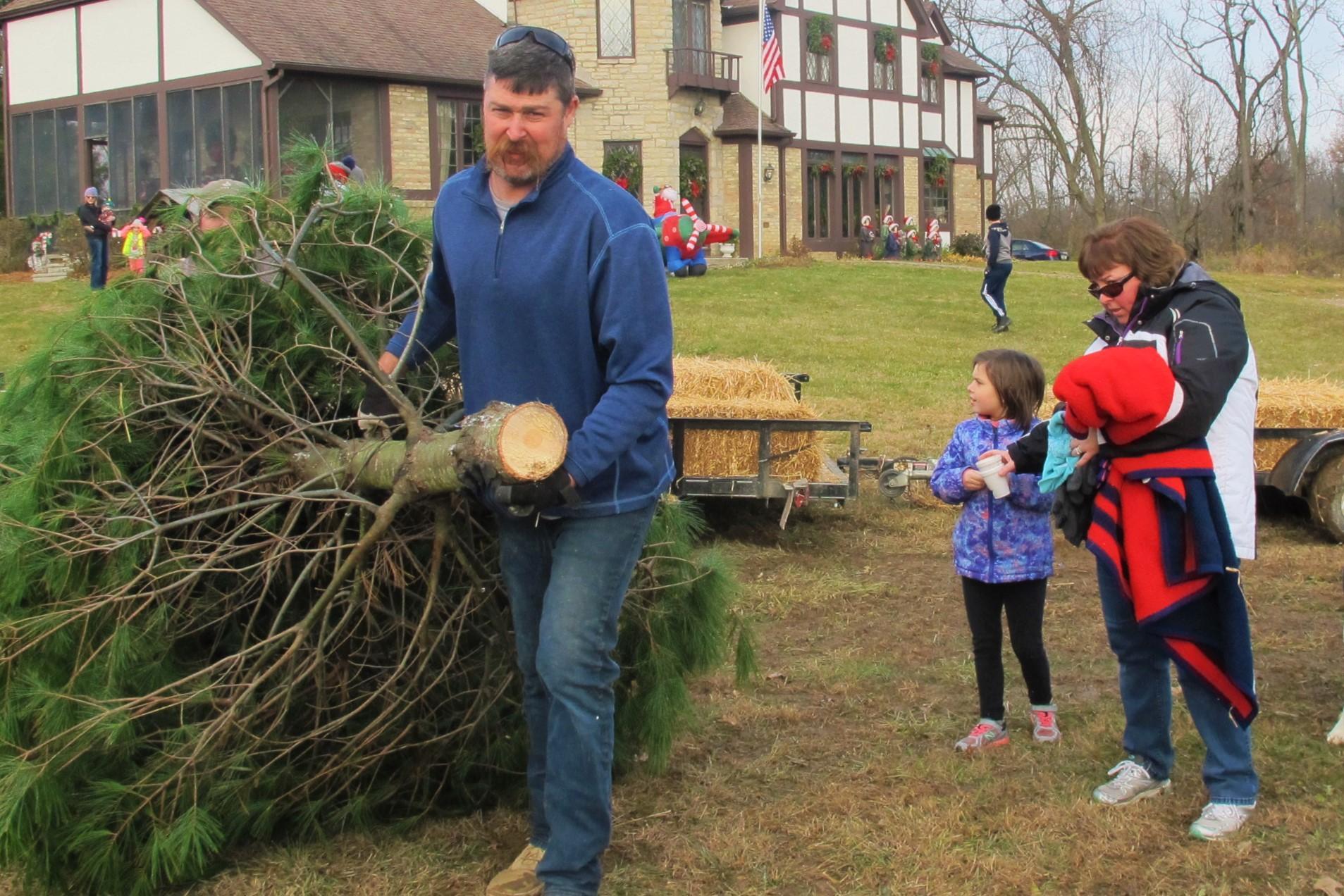 Timber! Christmas Tree Farms Topple Around Central Ohio | WOSU Radio
