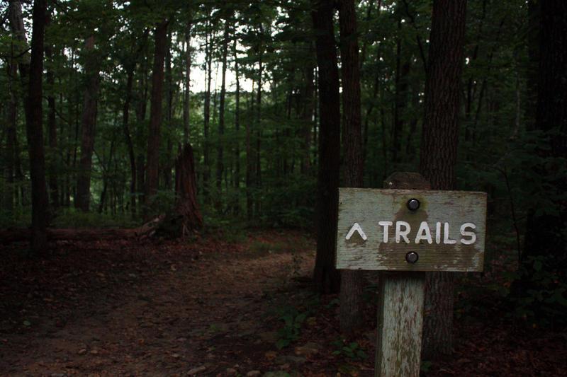 Beaman Park trails Nashville