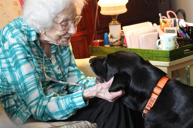 Pet therapy has become commonplace among assisted living facilities. Dogs and cats are used to prevent anxiety and loneliness.