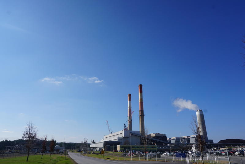 Environmental groups sued TVA over leakage coming out of the utility's ash storage pond in Gallatin.