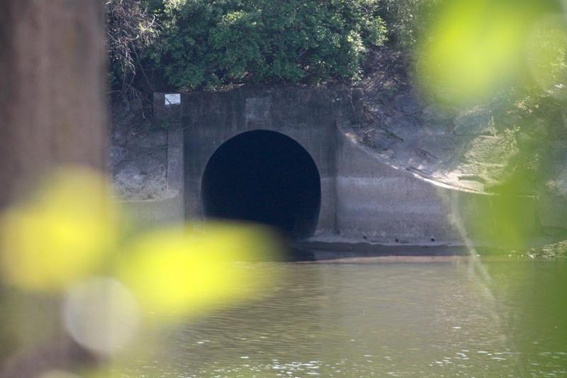 Nashville tunnel Wilson Spring Storm Tunnel