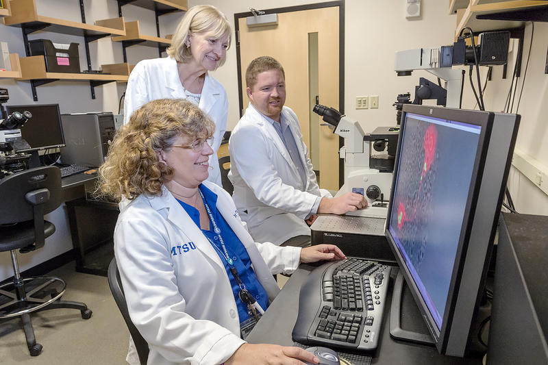 Researchers Mary Farone, left, and Sharon Berk view a graphic image of the single-celled organisms in the water, which is part of their nearly 20-year study with Tennessee Tech researchers finding bacteria in a hot tub and cooling towers.