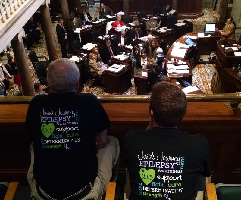 Backers of cannabis oil watch from the gallery of the Tennessee Senate during a 2015 debate over legalizing its use for some childhood maladies.