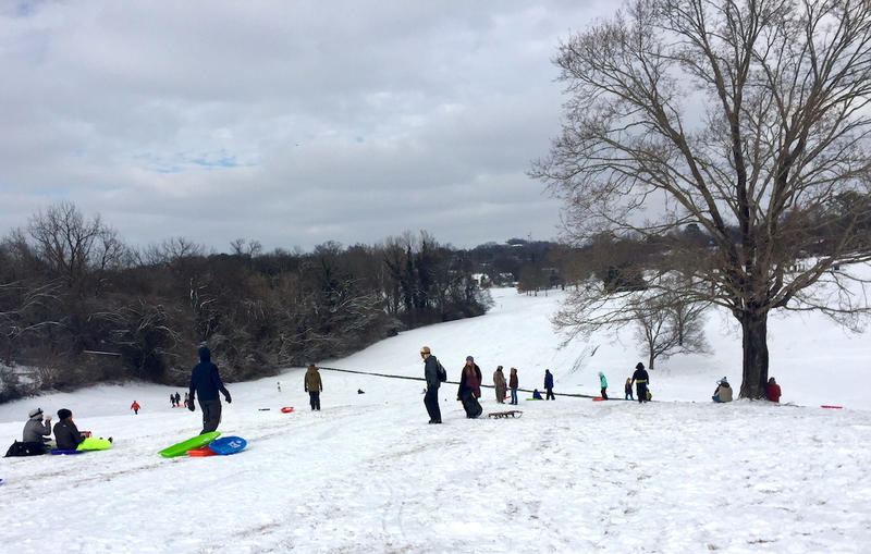 Shelby Park was filled with makeshift and newly purchased sleds.