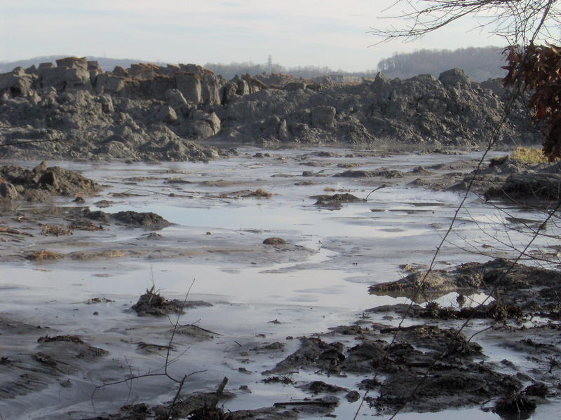 More than 1 billion gallons of coal ash slurry spilled into the river near the Kingston Fossil Fuel Plant.