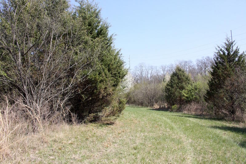 The cut is about 30 feet wide and has been maintained with two or three mowing passes each year since 2004.