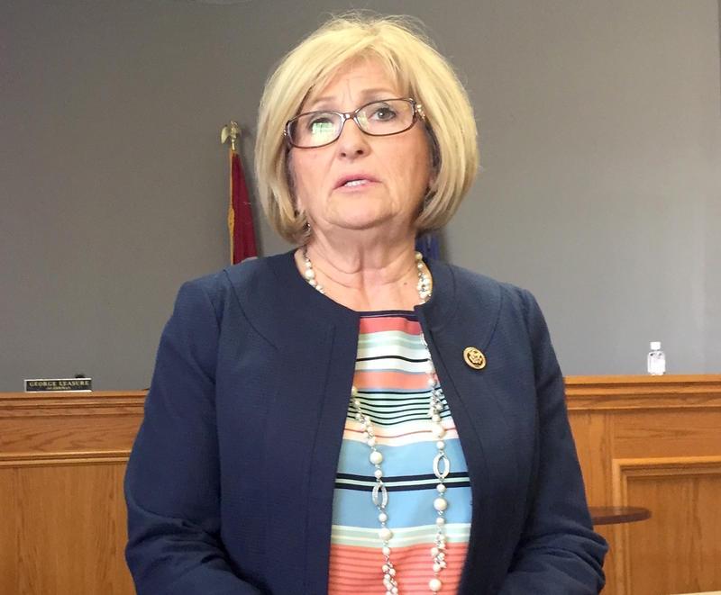 Congressman Diane Black