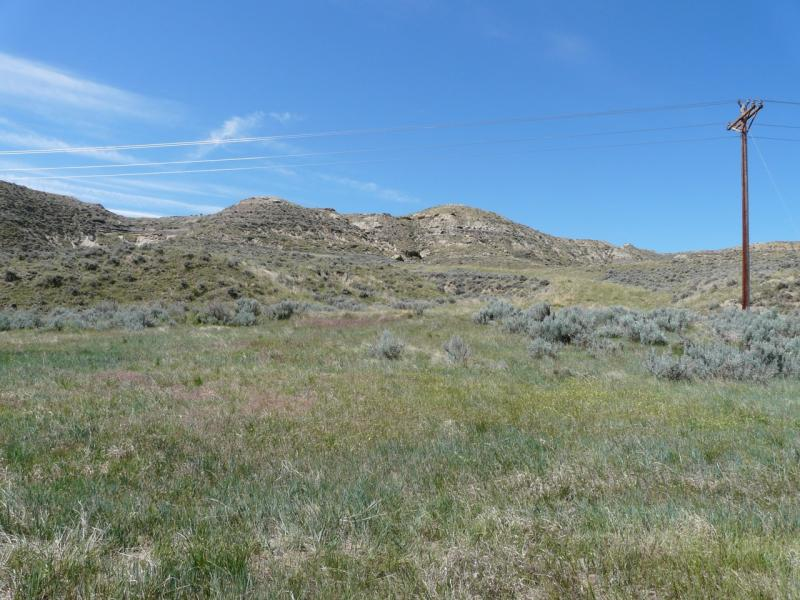 This well site near the Powder River was reclaimed eight years ago, but BLM officials say more needs to be done to make the area hospitable to sage grouse.