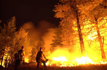 Wildfire in the Shoshone National Forest
