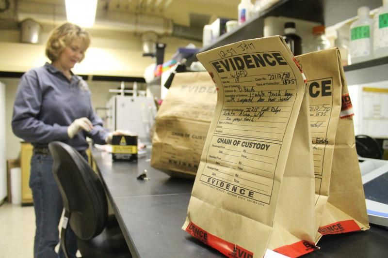 Lab Director Dee Dee Hawk examines evidence at the Wildlife Forensics Lab in Laramie.