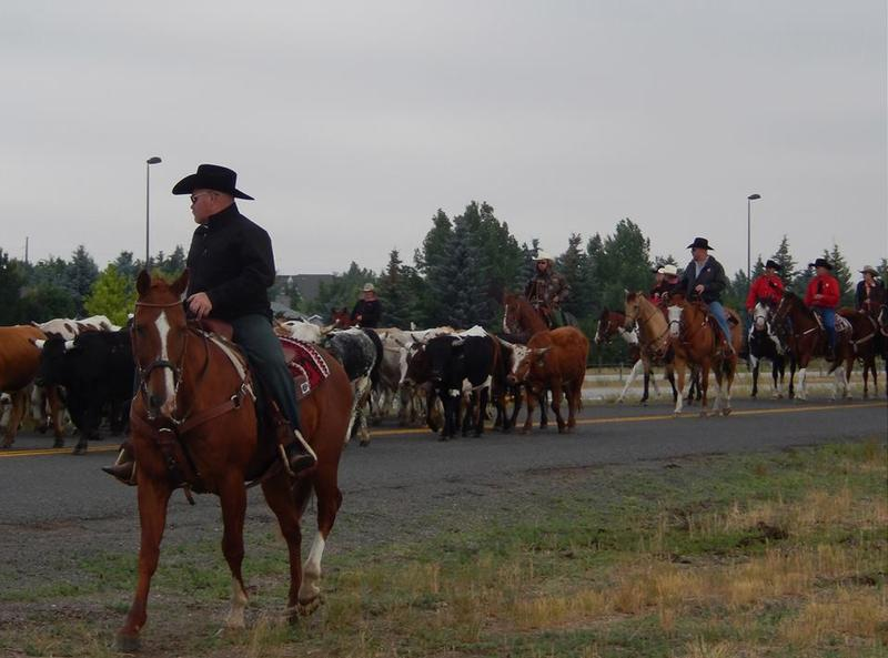 StoryCorps Mobile team witnessed a cattle drive on their month-long recording stop