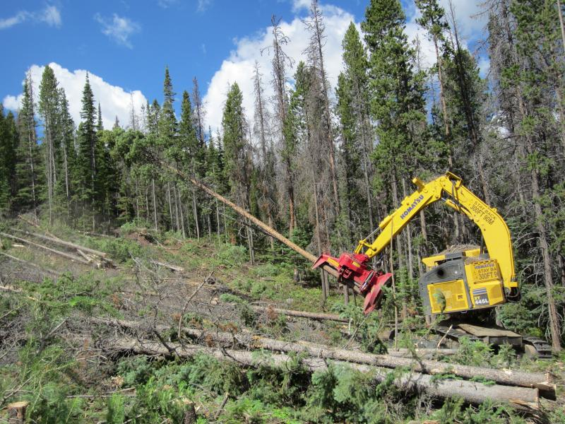 Saratoga Forest Management uses a machine called a feller-buncher to cut and stack trees on Elk Mountain. The Wyoming State Forestry Division says private saw mills own the heavy equipment necessary to clear large swaths of highly-flammable beetle-killed