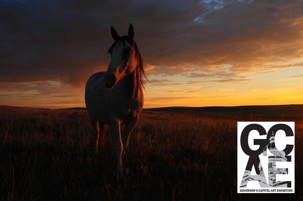 "Dan Hayward, ""True Spanish Mustang Mare as the Sun Rises"""
