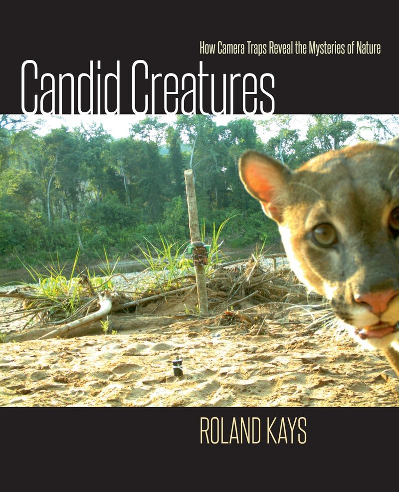 Candid Creatures was published by Johns Hopkins in 2016.