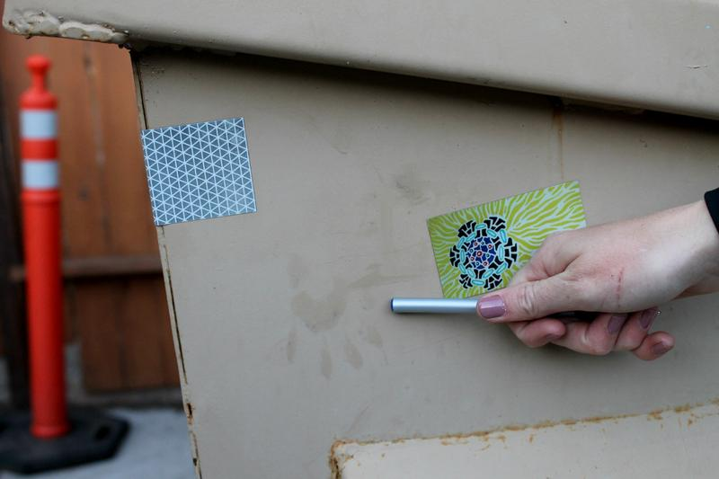 Team member Alix Wimberley points out a raccoon paw mark on the public library dumpster.