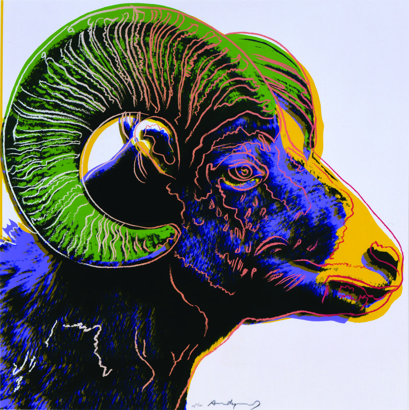 Bighorn Ram - Andy Warhol (American, 1928-1987), Bighorn Ram, 1983. Screenprint. 38 x 38 inches. Gift of the 2006 Collectors Circle and an Anonymous Donor and the NMWA Acquisitions Fund, National Museum of Wildlife Art