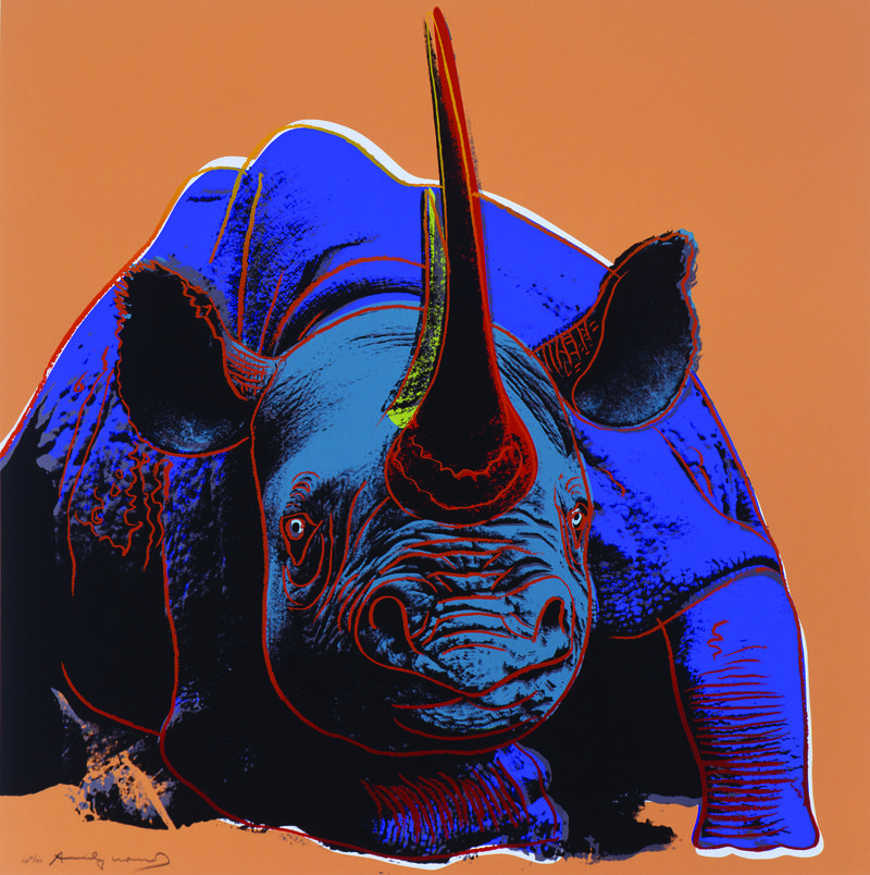 Black Rhinoceros - Andy Warhol (American, 1928-1987), Black Rhinoceros, 1983. Screenprint. 38 x 38 inches. Gift of the 2006 Collectors Circle and an Anonymous Donor and the NMWA Acquisitions Fund, National Museum of Wildlife Art.