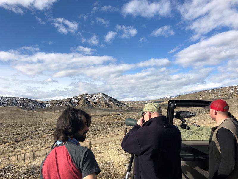 From left, Corey Anco, Charles Preston and Nate Horton aim their scopes at a golden eagle nest to see if it is occupied by an eagle.