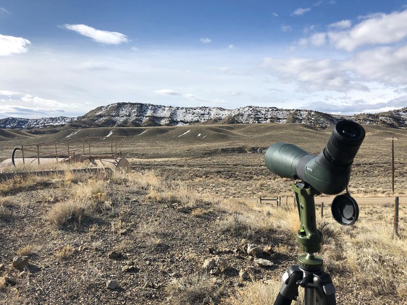 A scope directed at a golden eagle nest in the Big Horn Basin.