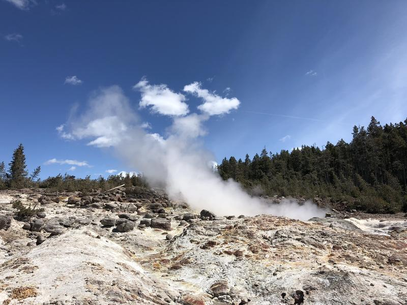 Steamboat Geyser steaming